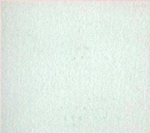 Rivestimento-di-parete-Vitali-Ascensori-Ascoli-Piceno-AP